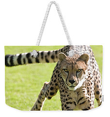 cheetah Running Portrait Weekender Tote Bag