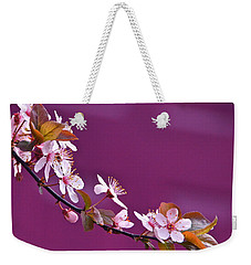 Cherry Blossoms And Plum Door Weekender Tote Bag