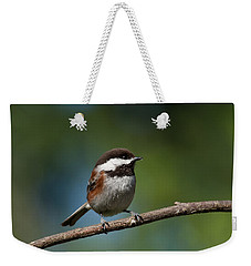 Chestnut Backed Chickadee Perched On A Branch Weekender Tote Bag