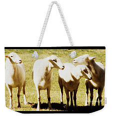 Weekender Tote Bag featuring the photograph Cheviot Sheep by Kathy Barney