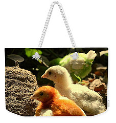 Weekender Tote Bag featuring the photograph Cute Chicks by Salman Ravish