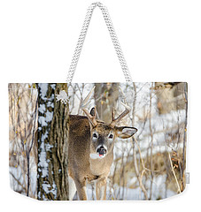 Weekender Tote Bag featuring the photograph Childish Buck by Steven Santamour