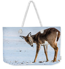 Weekender Tote Bag featuring the photograph Children Eat Free by Steven Santamour