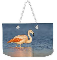 Chilean Flamingo Weekender Tote Bag by Ronald Kamphius