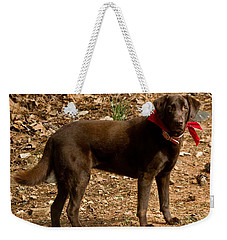 Chocolate Lab Weekender Tote Bag