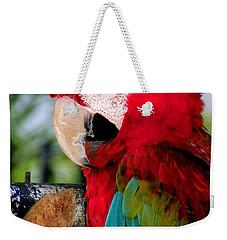 Chowtime Weekender Tote Bag by Karen Wiles