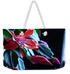 Christmas Cactus In Bloom Weekender Tote Bag