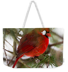 Christmas Cardinal Weekender Tote Bag by Kerri Farley