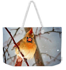 Northern Cardinal Snow Scene Weekender Tote Bag