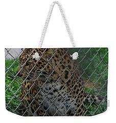 Christmas Leopard I Weekender Tote Bag