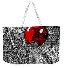 Christmas Tree Squirrel With Red Ornament Weekender Tote Bag