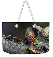 Cicada - The Red-eyed Monster Weekender Tote Bag by Yvonne Wright