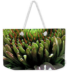Weekender Tote Bag featuring the photograph Circle Of Friends by Jean OKeeffe Macro Abundance Art