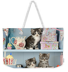 Baking Shelf Kittens Weekender Tote Bag by Greg Cuddiford
