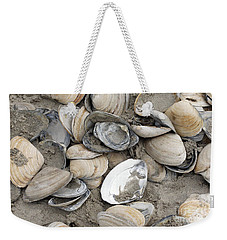 Weekender Tote Bag featuring the photograph Clam Shell Beach  by Denise Pohl