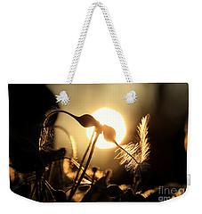 Clematis - Sunset Weekender Tote Bag by Kenny Glotfelty