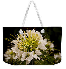 Weekender Tote Bag featuring the photograph Cleome Hassleriana  by Ben Shields