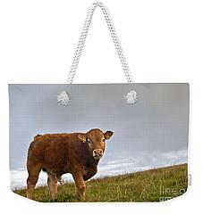 Cliffs Of Moher Brown Cow Weekender Tote Bag