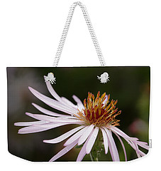 Weekender Tote Bag featuring the photograph Climbing Aster by Paul Rebmann