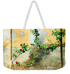 Weekender Tote Bag featuring the photograph Climbing Rose Plant by Silvia Ganora