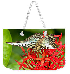 Clipper Butterfly Weekender Tote Bag by Scott Carruthers