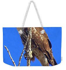 Hawk Close Up  Weekender Tote Bag by Bobbee Rickard
