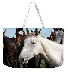 Close-up Herd Of Horses. Weekender Tote Bag