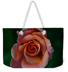 Close-up Of A Pink Rose, Beverly Hills Weekender Tote Bag