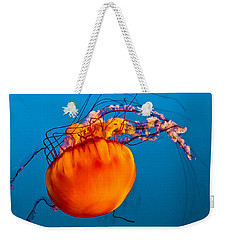 Weekender Tote Bag featuring the photograph Close Up Of A Sea Nettle Jellyfis by Eti Reid
