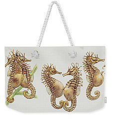 Close-up Of Sea Horses Weekender Tote Bag by English School
