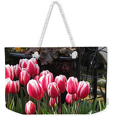 Weekender Tote Bag featuring the photograph Closed Tulips by Kim Prowse