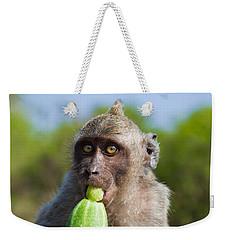 Closeup Monkey Eating Cucumber Weekender Tote Bag