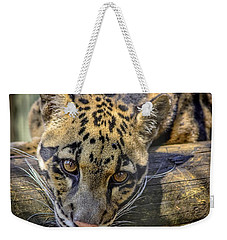 Weekender Tote Bag featuring the photograph Clouded Leopard by Steven Sparks
