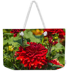 Cluster Of Dahlias Weekender Tote Bag by Jane Luxton