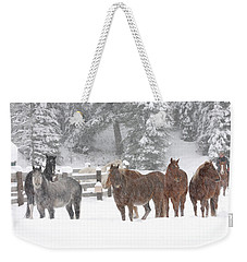 Cold Ponnies Weekender Tote Bag