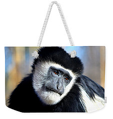 Weekender Tote Bag featuring the photograph Colobus Contemplation by Deena Stoddard