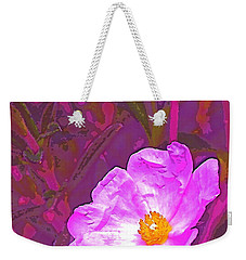 Weekender Tote Bag featuring the photograph Color 2 by Pamela Cooper