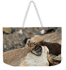 Colorado Pika Weekender Tote Bag