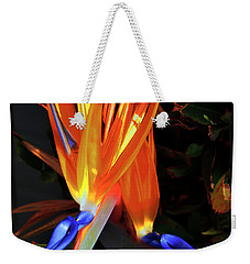 Weekender Tote Bag featuring the photograph Colorful California Morning by Clayton Bruster
