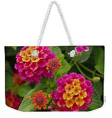 Colorful Lantana  Weekender Tote Bag
