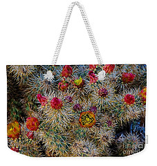 Colors Weekender Tote Bag by Angela J Wright