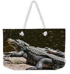 Comfy Cozy Weekender Tote Bag by Lois Bryan