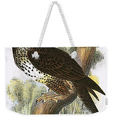 Common Buzzard Weekender Tote Bag by English School
