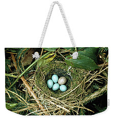 Common Cuckoo Cuculus Canorus Egg Laid Weekender Tote Bag by Jean Hall