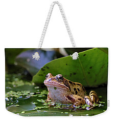 Common Frog Weekender Tote Bag