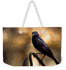 Common Grackle Weekender Tote Bag