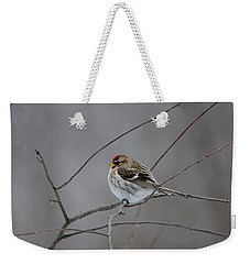 Weekender Tote Bag featuring the photograph Common Redpoll by David Porteus