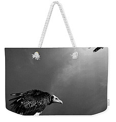 Conceptual - Vultures Awaiting Weekender Tote Bag by Johan Swanepoel