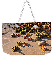 Conch Collection Weekender Tote Bag by Jola Martysz