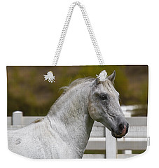 Weekender Tote Bag featuring the photograph Conversano Mima D2724 by Wes and Dotty Weber